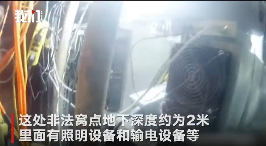 Полиция Китая обнаружила подпольные майнинг-фермы под вольерами для собак