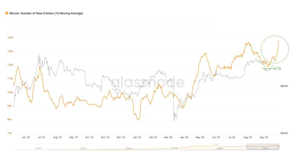 Отчет: Ходлеры контролируют более 63% биткоинов