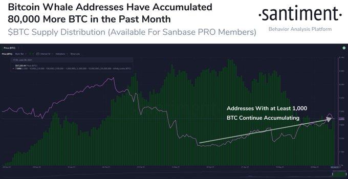 Сальвадорский эффект: Биткоин вплотную приблизился к $37 000
