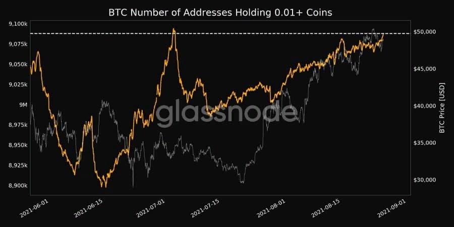 Число биткоин-адресов с ненулевым балансом достигло двухмесячного максимума